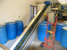 Conveyor brings olives into the crusher. By Wayne Sherman.