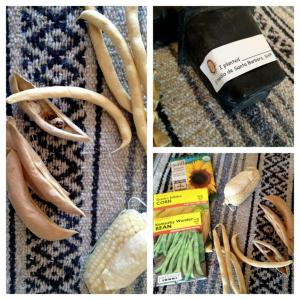 Components of the Huerta activity. Photo by Brittany Avila.