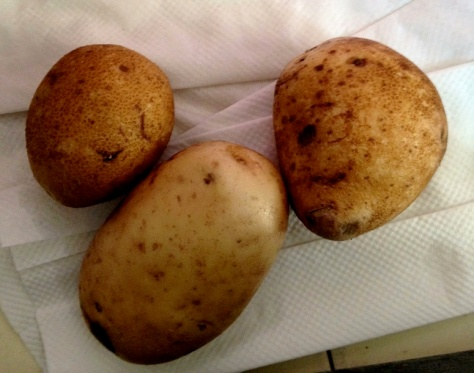 When raw, peeled, and placed on a wound, spuds were believed to decrease bruising. Photo by Brittany Avila.