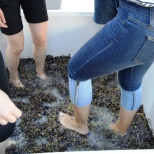 Crushing the grapes by foot. Photo by Michael Imwalle.