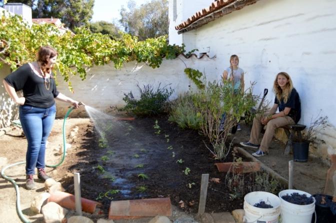 New Volunteers Plant our Fall Garden at El Presidio de Santa Barbara SHP