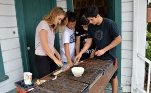 Lauren, Wes, Pica, and Piero starting flats of beans from seeds grown in the Presidio Heritage Garden. Photo by Mike Imwalle.