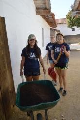 7-hauling-mulch