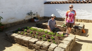 Josh Colahan and Anne Burdette with recently planted lettuce in the new adobe planters at the Northwest Corner Visitor's Center. Photo by Mike Imwalle.