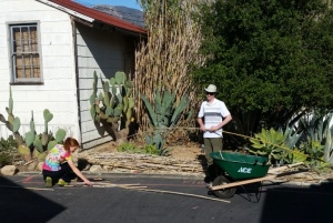 Anne and Josh harvesting giant cane (Arundo donax) at. Photo by Mike Imwalle.