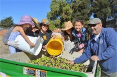 Mila Zavala, Diegas Zavala, Terri Imwalle, Jessica Zavala, Evia Zavala, and Mike Imwalle delivering olives from the field to the bin. Photo by Leeann Haslouer.