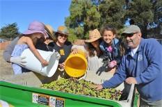 Mila Zavala, Diegas Zavala, Terri Imwalle, Jessica Zavala, Evia Zavala, and Mike Imwalle delivering olives from the field to the bin. Photo by Leeann Haslouer.